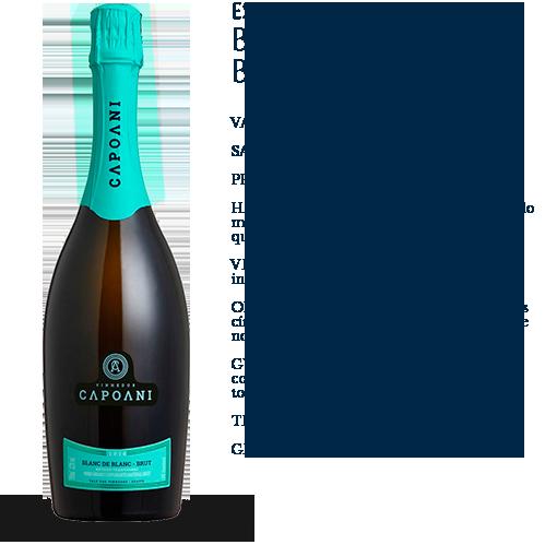 Capoani-Espumante-Blanc-De-Blanc-Brut-2016-2