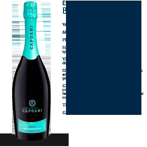 Capoani-Espumante-Brut-2011-2