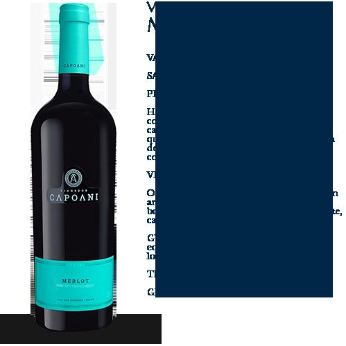 Capoani-Vinho-Tinto-Merlot-2018-2
