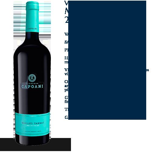 Capoani-Vinho-Tinto-Merlot-Tannat-2013-2