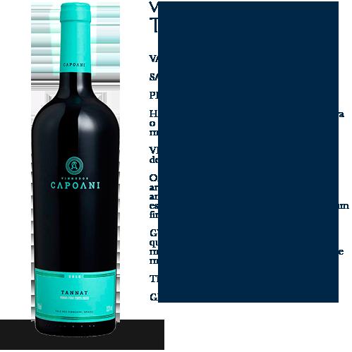 Capoani-Vinho-Tinto-Tannat-2015-2